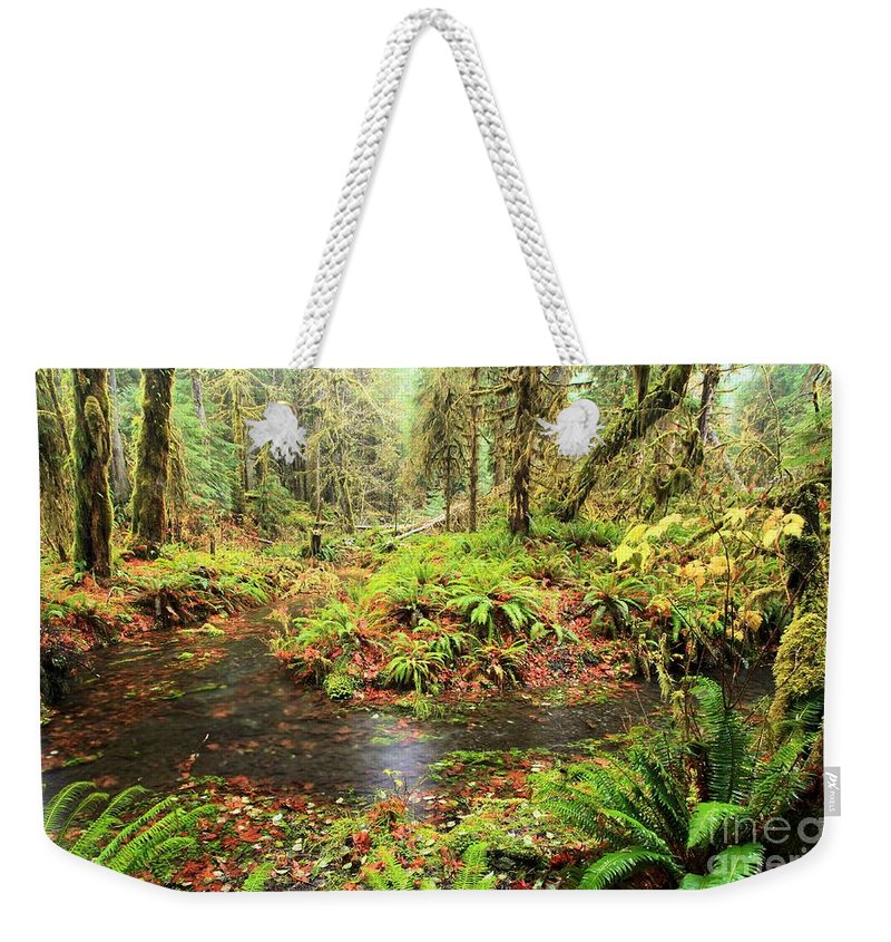 Hoh Rainforest Weekender Tote Bag featuring the photograph Rainforest Flood by Adam Jewell