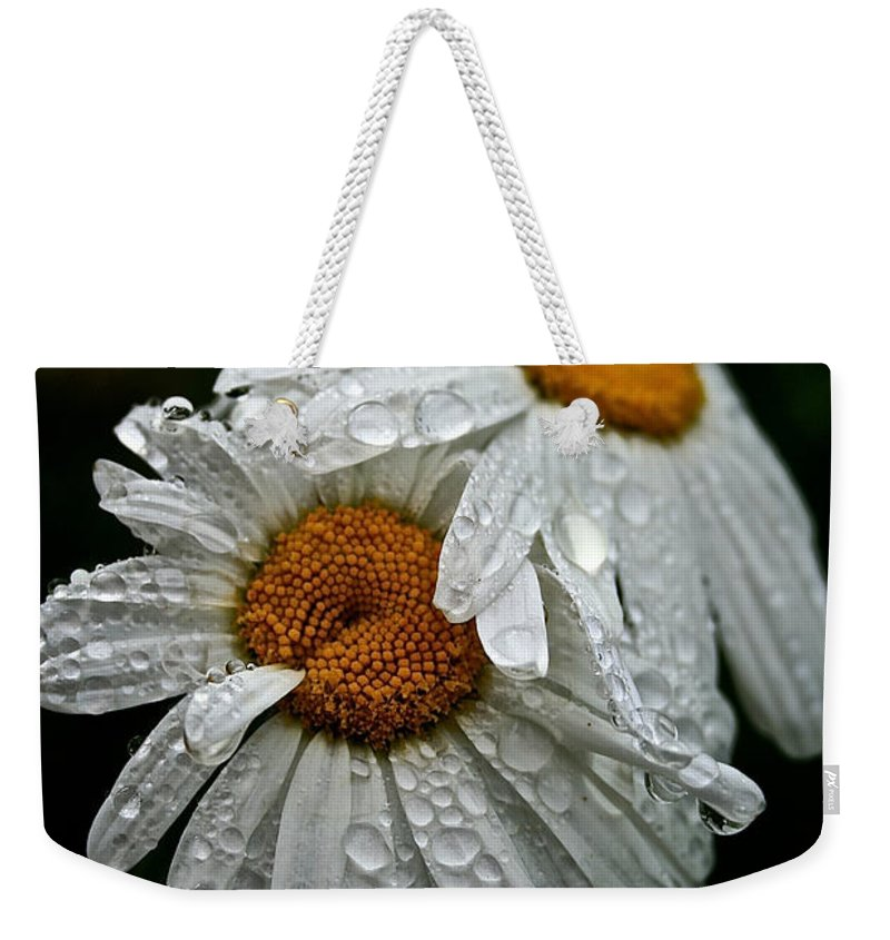 Floral Weekender Tote Bag featuring the photograph Rainy Day Daisies by Susan Herber