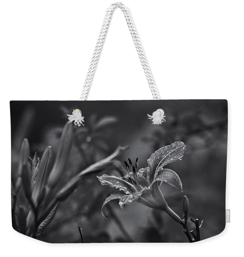 Daylily Weekender Tote Bag featuring the photograph Rainy Day Lily by Susan Capuano
