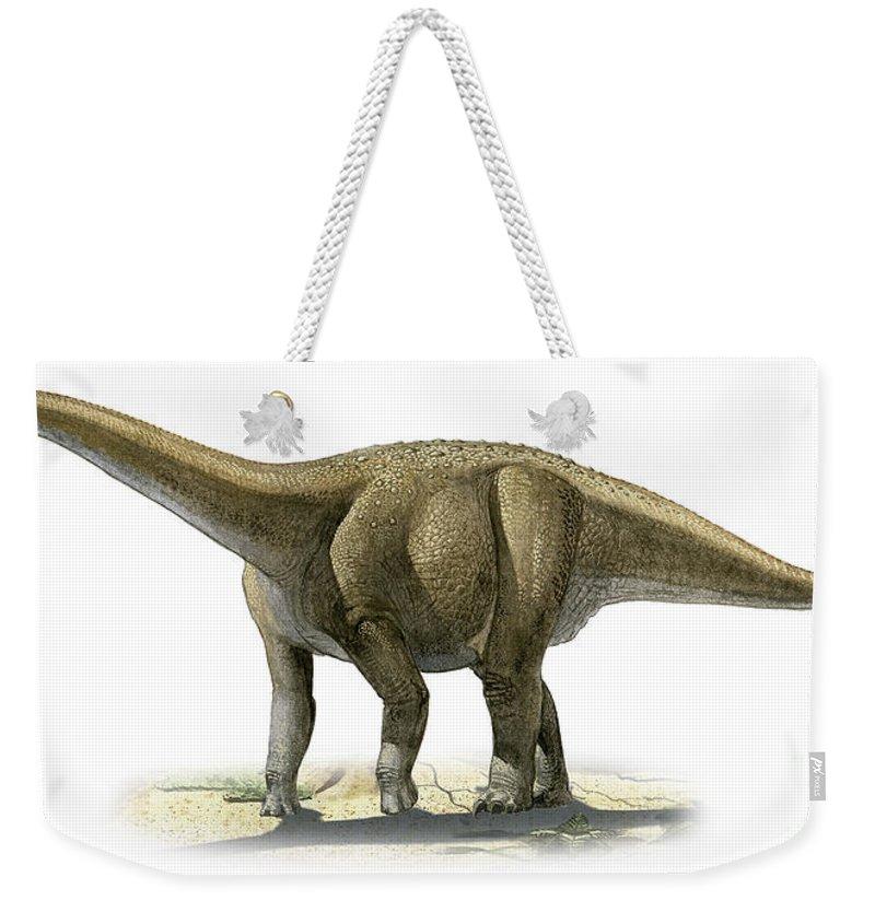 Horizontal Weekender Tote Bag featuring the digital art Rapetosaurus Krausei, A Prehistoric Era by Sergey Krasovskiy