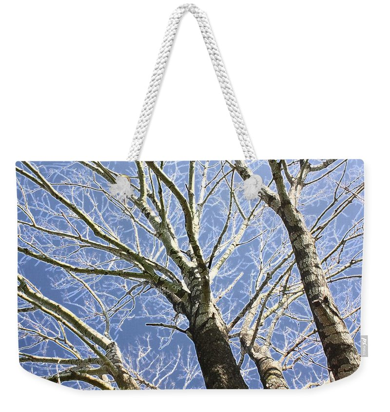 Trees Weekender Tote Bag featuring the photograph Reaching For The Sky by Donna G Smith