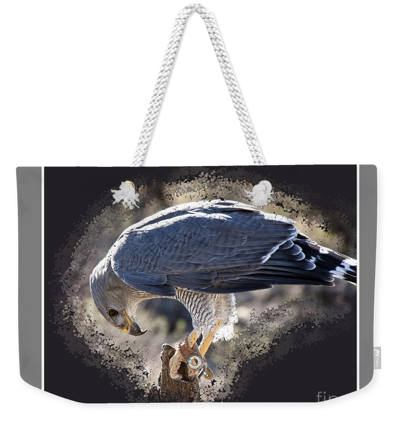 Bird Weekender Tote Bag featuring the photograph Really by Larry White