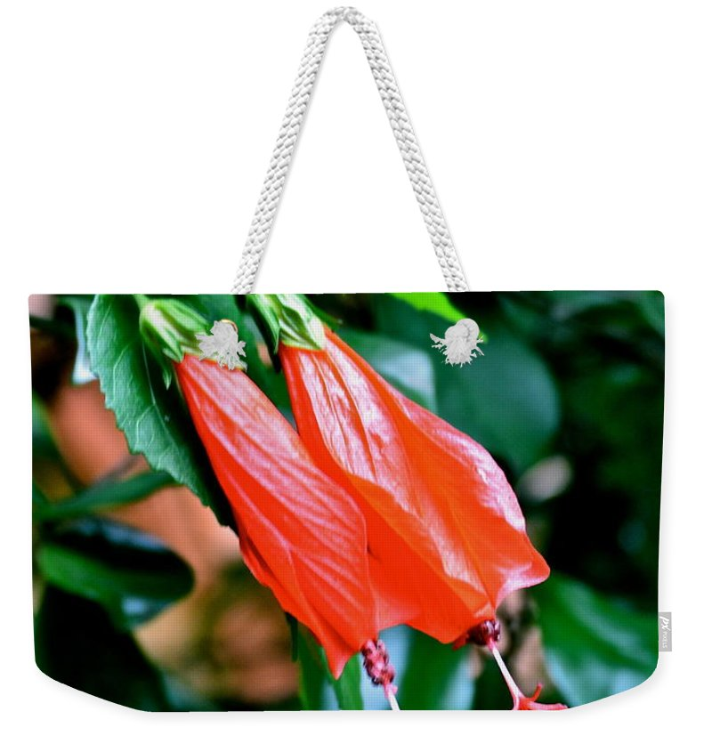 Red Flowers Weekender Tote Bag featuring the photograph Really Really Red by Carol Bradley