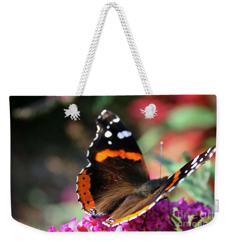 Outdoors Weekender Tote Bag featuring the photograph Red Admiral by Susan Herber