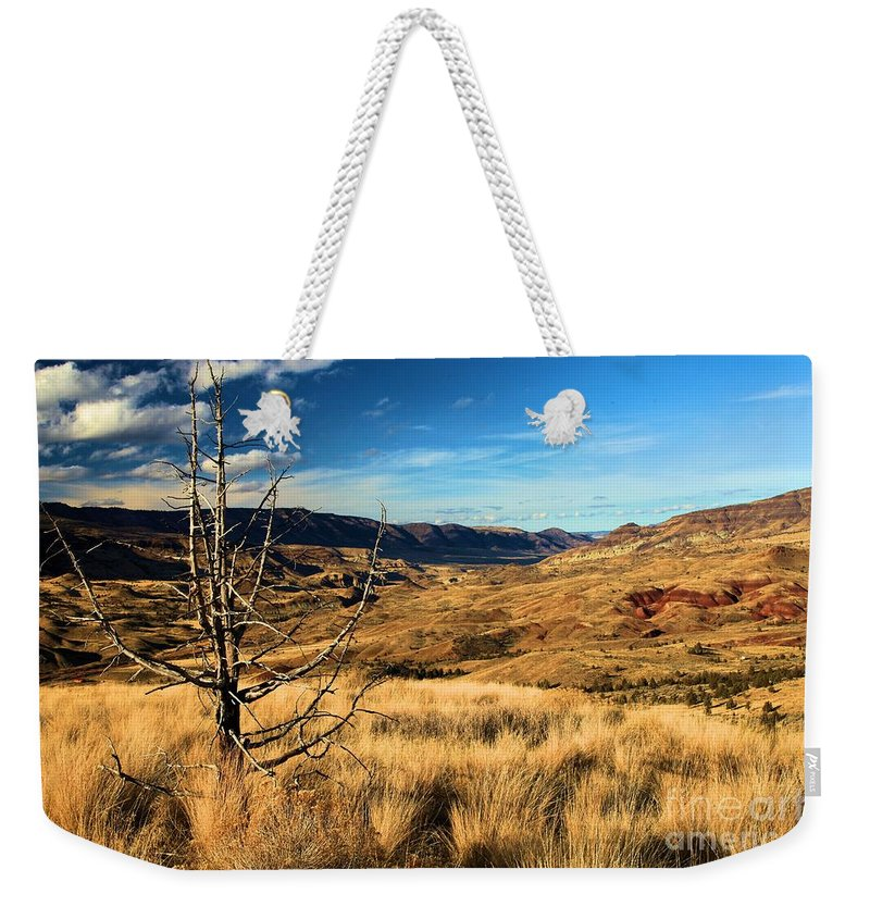 John Day Fossil Beds National Monument Weekender Tote Bag featuring the photograph Red And Gold by Adam Jewell