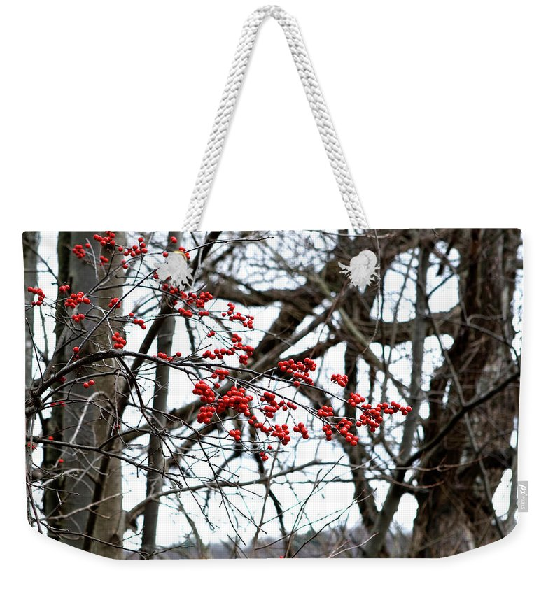 New York Weekender Tote Bag featuring the photograph Red Berries White Sky by Lorraine Devon Wilke