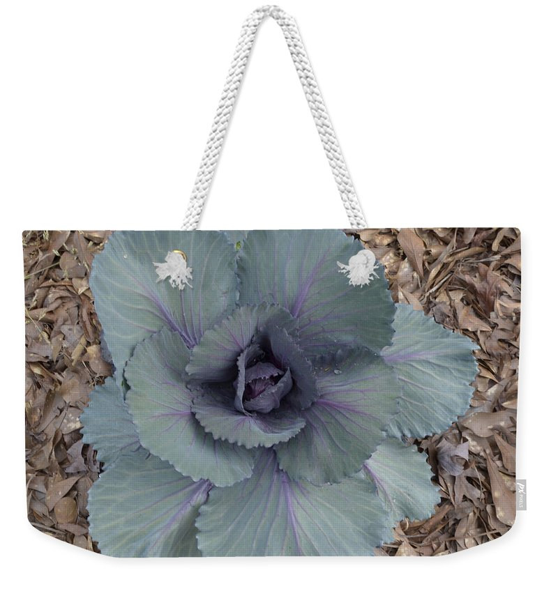 Plant Weekender Tote Bag featuring the photograph Red Cabbage by Donna Brown