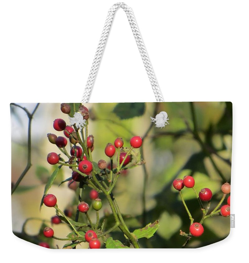 Ruby In Green Weekender Tote Bag featuring the photograph Red Dots by Sonali Gangane