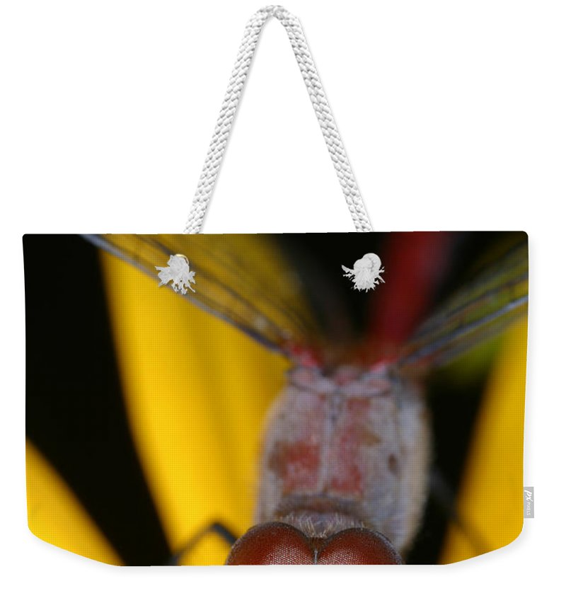 Red Dragonfly Weekender Tote Bag featuring the photograph Red Dragonfly by Ted Kinsman