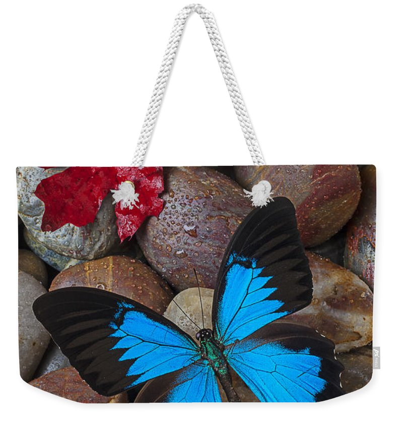 Blue Weekender Tote Bag featuring the photograph Red Leaf And Blue Butterfly by Garry Gay