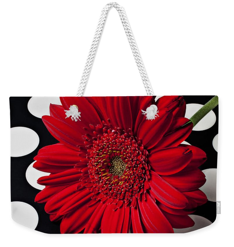 Red Weekender Tote Bag featuring the photograph Red Mum With White Spots by Garry Gay