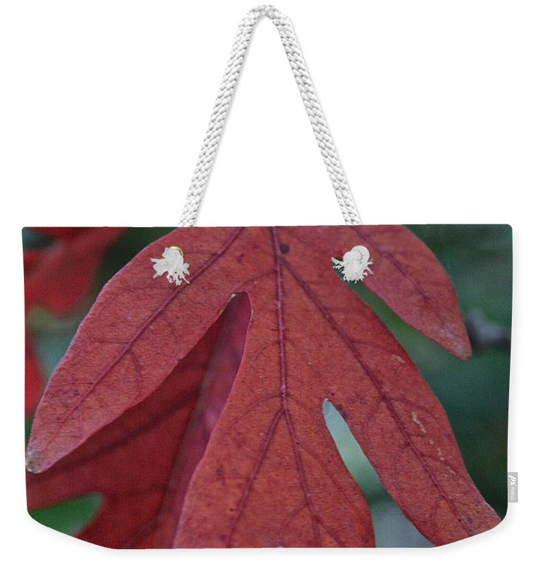 Outdoors Weekender Tote Bag featuring the photograph Red Oak Leaf by Susan Herber