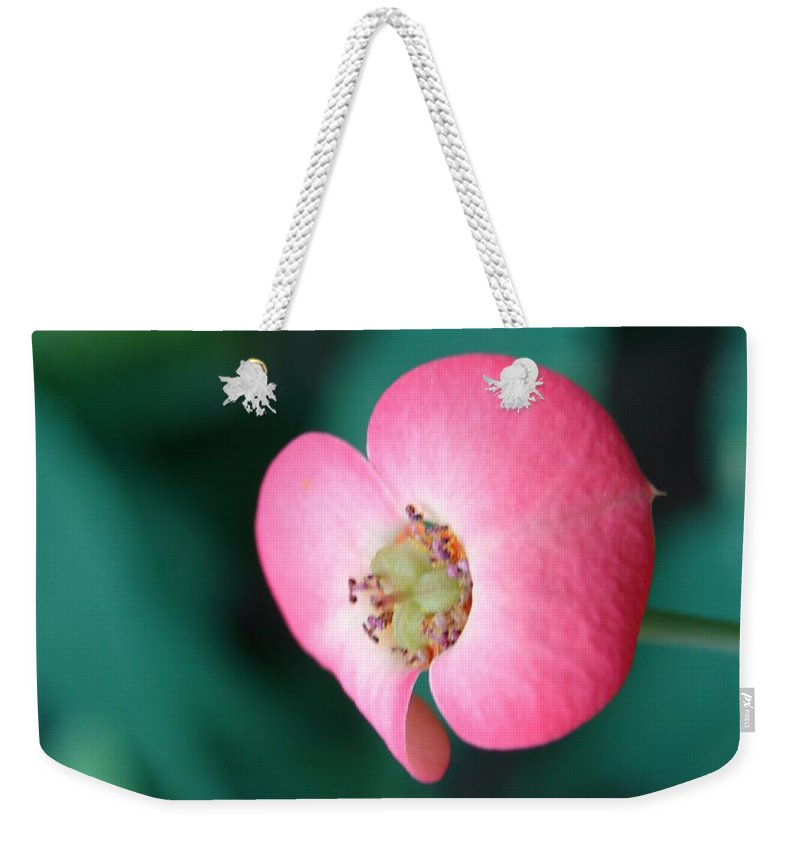 Flower Weekender Tote Bag featuring the photograph Red Orchid by Randy J Heath