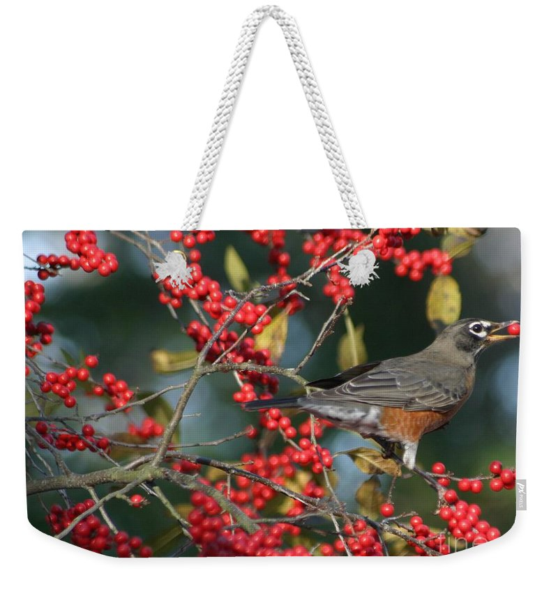 Birds Weekender Tote Bag featuring the photograph Red Robin by Living Color Photography Lorraine Lynch