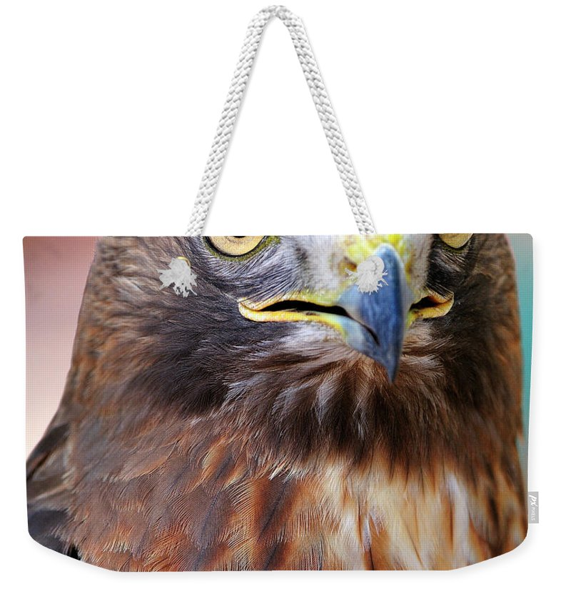 Red-tailed Weekender Tote Bag featuring the photograph Red-tailed Hawk by Bill Dodsworth