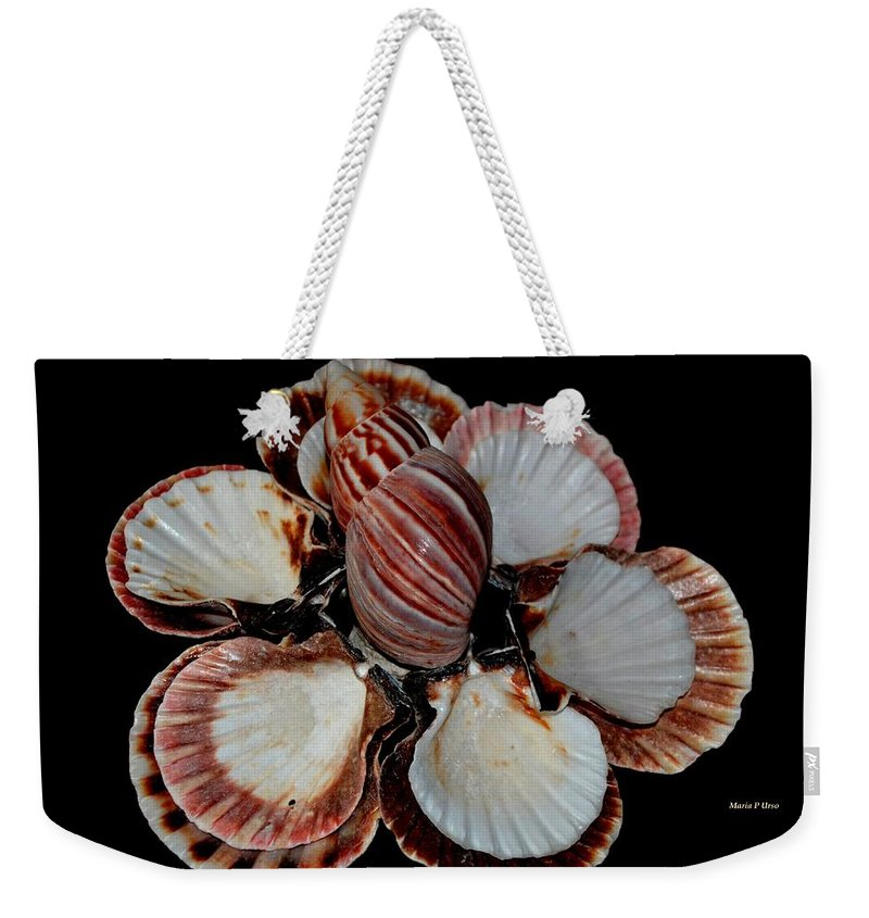 Red Weekender Tote Bag featuring the photograph Red-toned Seashells by Maria Urso