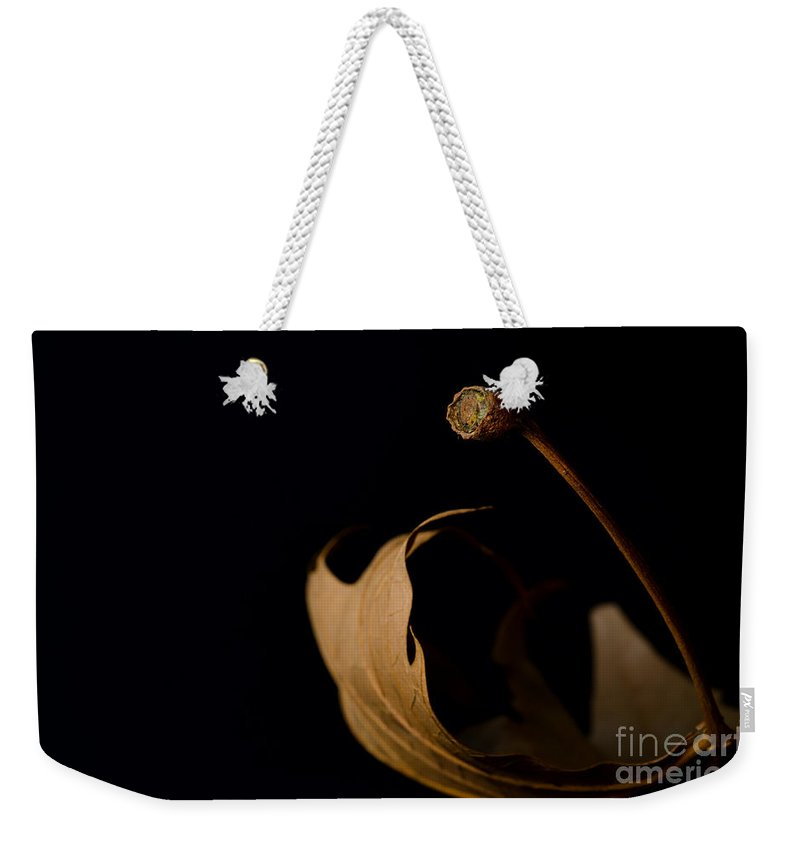 Leaf Weekender Tote Bag featuring the photograph Redleaf by Mats Silvan