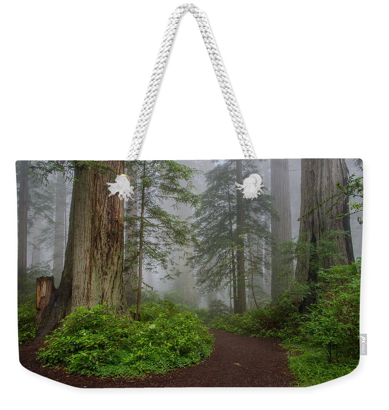 Lady Bird Johnson Grove Weekender Tote Bag featuring the photograph Redwoods Rising In Fog by Greg Nyquist