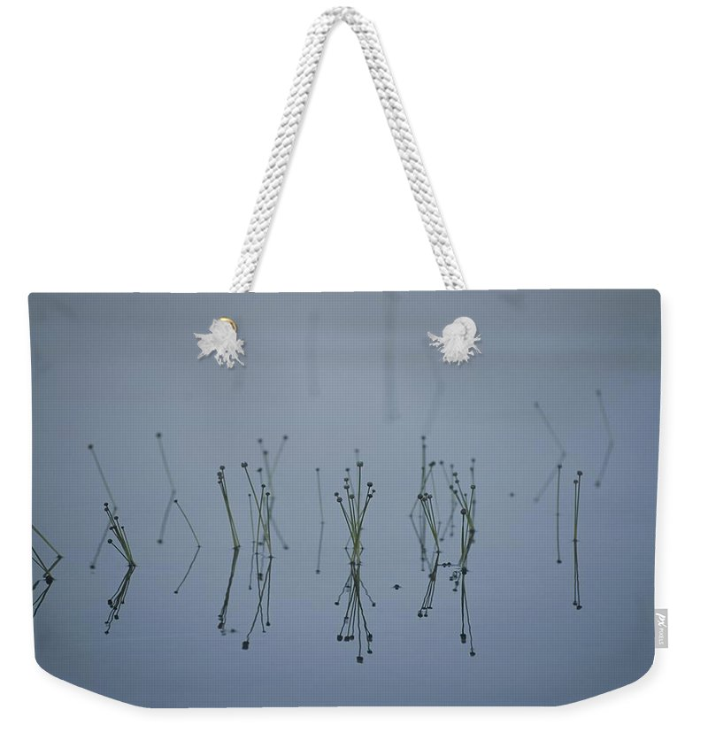 North America Weekender Tote Bag featuring the photograph Reflections Of Delicate Aquatic Plants by Michael S. Lewis