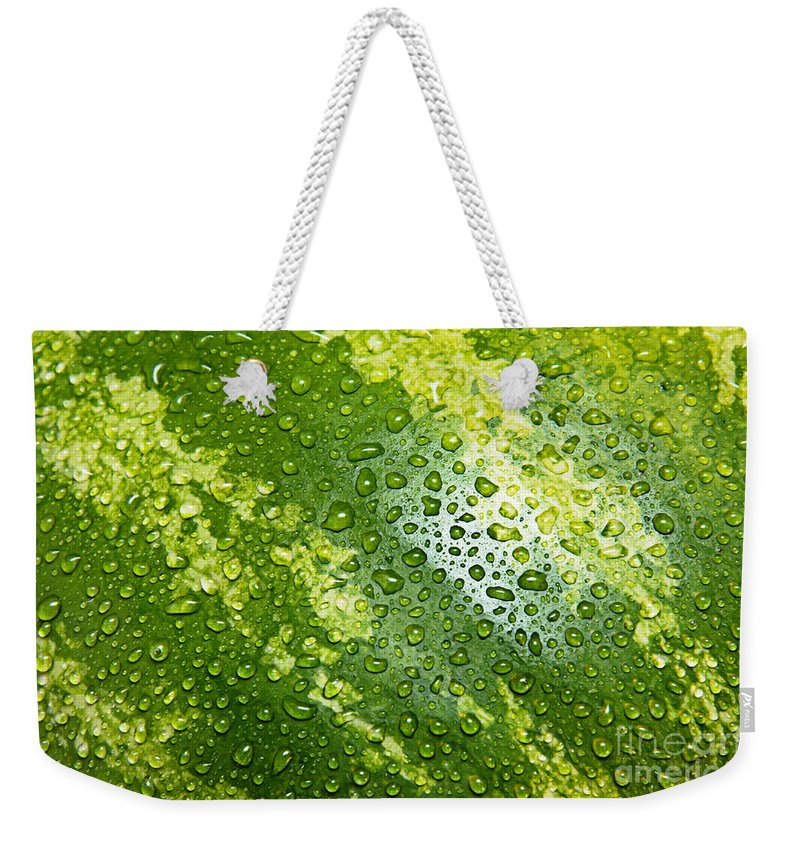 Watermelon Weekender Tote Bag featuring the photograph Refreshing Watermelon by Andee Design