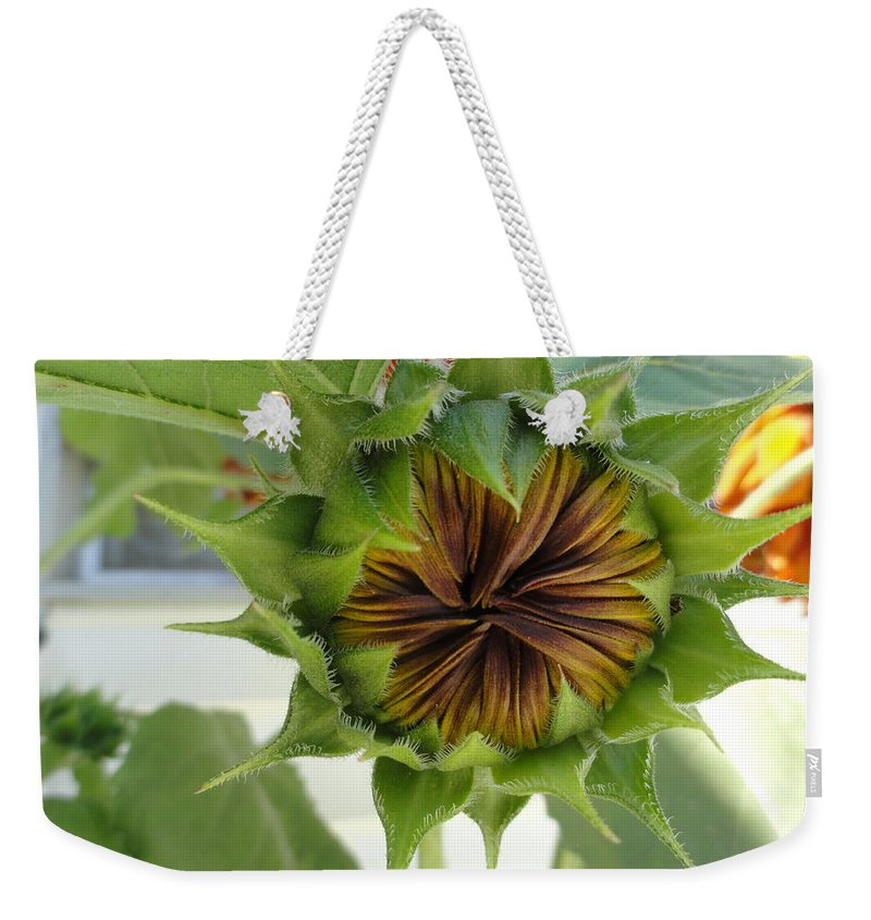 Sunflower Weekender Tote Bag featuring the photograph Reluctant To Bloom by Shannon Grissom