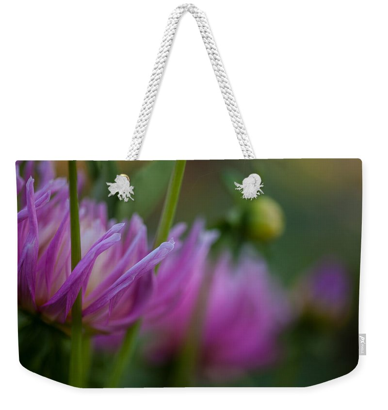 Flower Weekender Tote Bag featuring the photograph Restrained by Mike Reid