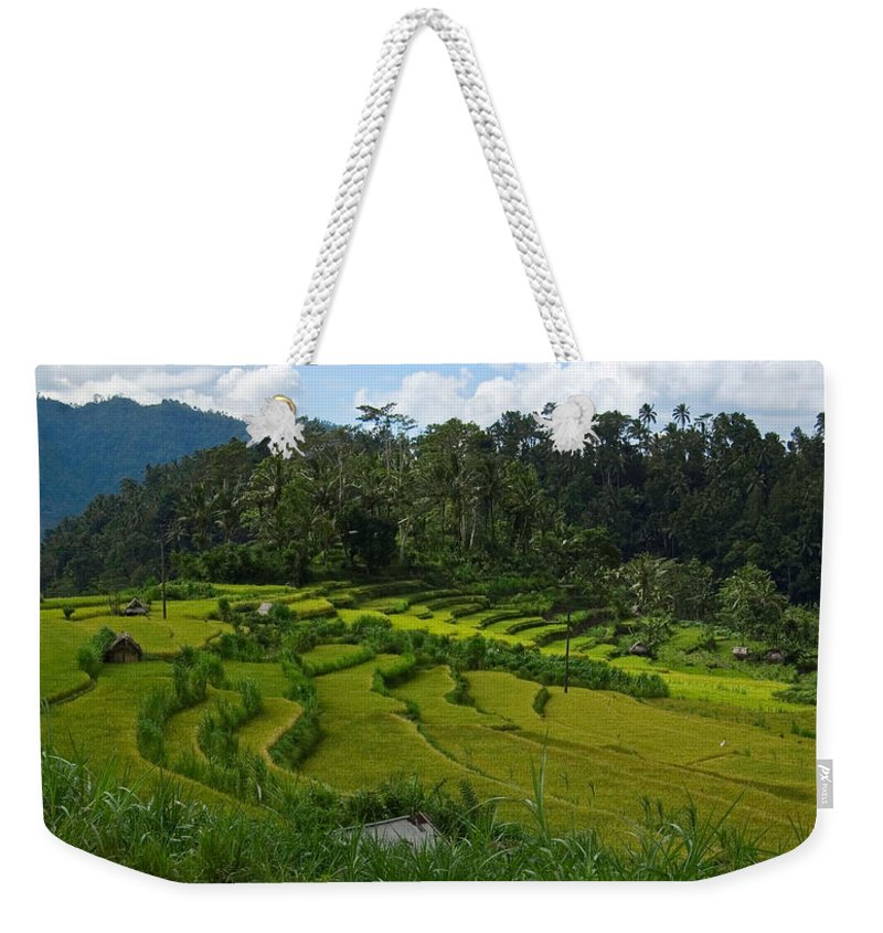 Photography Weekender Tote Bag featuring the photograph Rice Fields In Agricultural Bali by Brooke Whatnall