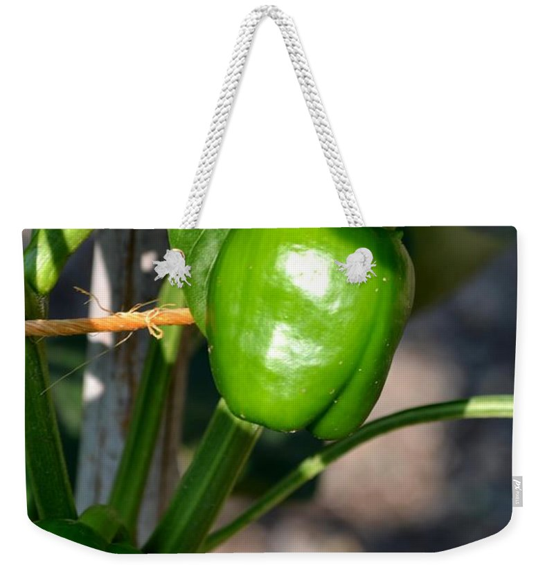 Ripened Weekender Tote Bag featuring the photograph Ripened Peppers by Maria Urso