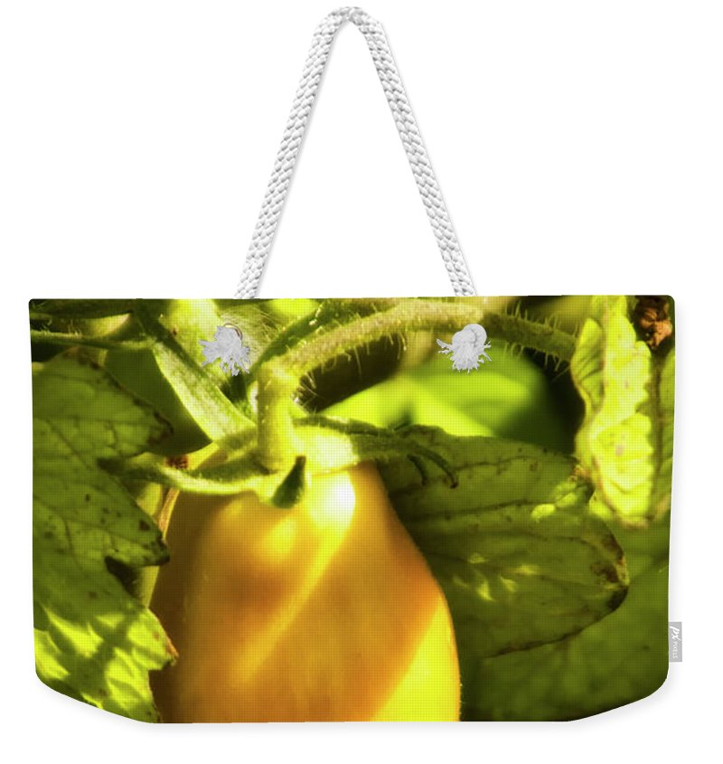 Afternoon Weekender Tote Bag featuring the photograph Ripening Roma by Albert Seger