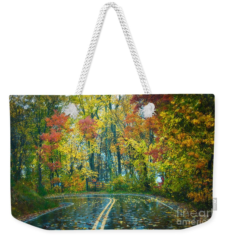 Fall Weekender Tote Bag featuring the photograph Roadway After The Rain by Anne Kitzman