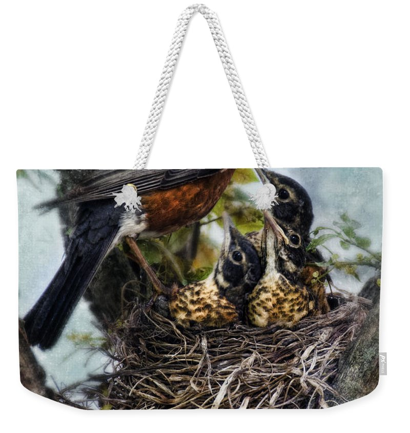 Robin Weekender Tote Bag featuring the photograph Robin And Babies In Nest by Jill Battaglia