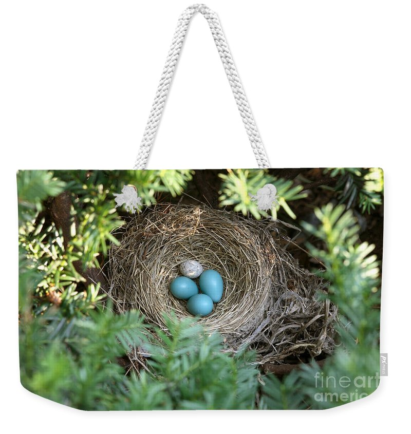 American Robin Weekender Tote Bag featuring the photograph Robins Nest And Cowbird Egg by Ted Kinsman