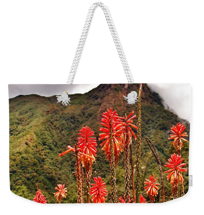Rockets Red Glare Weekender Tote Bag featuring the photograph Rocket's Red Glare by Skip Hunt