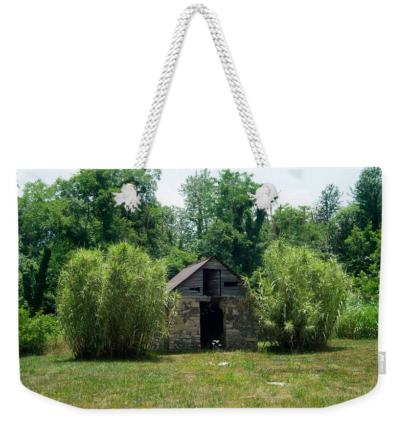 Root Weekender Tote Bag featuring the photograph Root Cellar 1 by Douglas Barnett