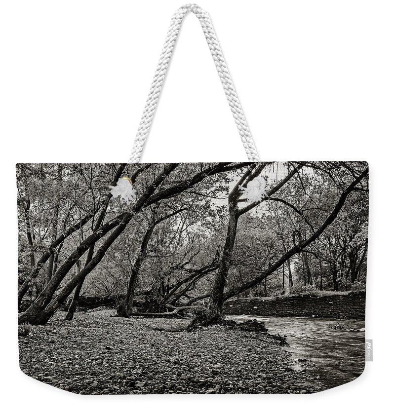 Cj Schmit Weekender Tote Bag featuring the photograph Rooted Within The Gravel by CJ Schmit