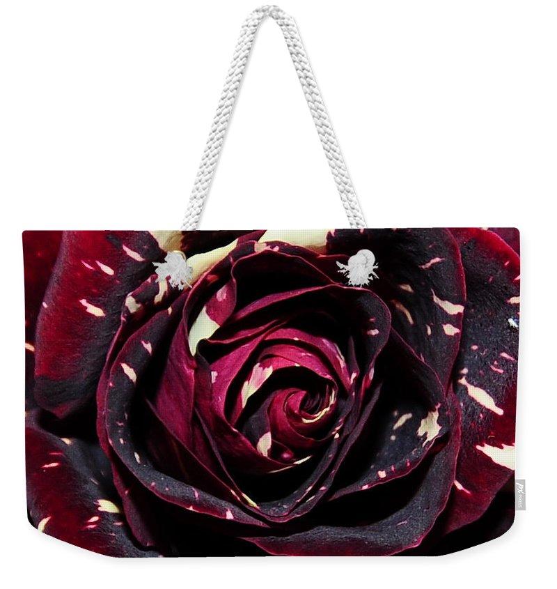 Roses Weekender Tote Bag featuring the photograph Rose 6 by Terri Winkler