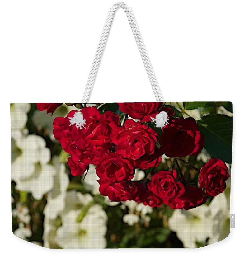 Flower Weekender Tote Bag featuring the photograph Rose Bouquet by Joseph Yarbrough