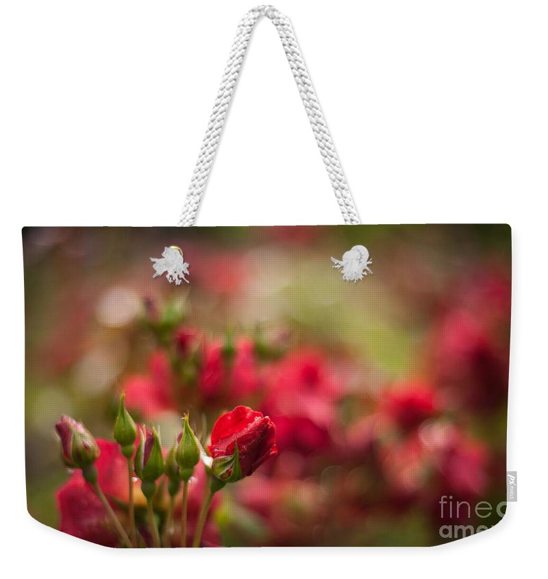 Flower Weekender Tote Bag featuring the photograph Rouge Amongst by Mike Reid