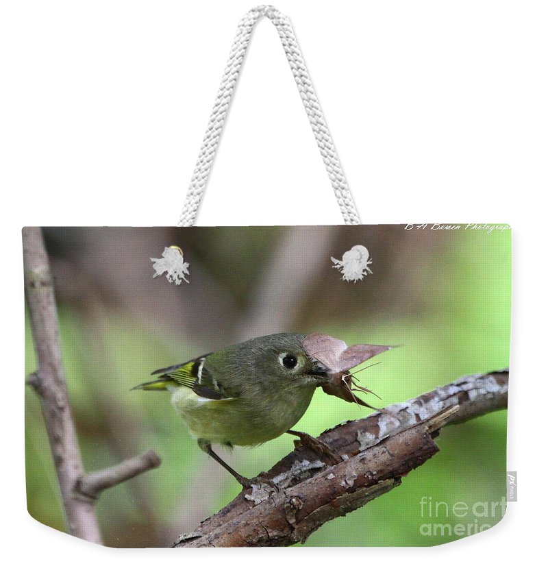 Ruby-crowned Kinglet Weekender Tote Bag featuring the photograph Ruby-crowned Kinglet Nabs A Moth by Barbara Bowen
