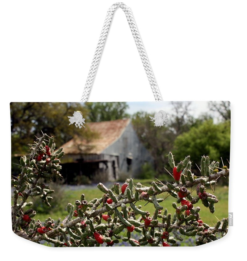 Texas Weekender Tote Bag featuring the photograph Rustic Cactus Abandoned Barn by Terry Fleckney
