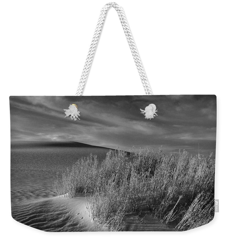 New Mexico Weekender Tote Bag featuring the photograph Sand Shrub 4 by Sean Wray