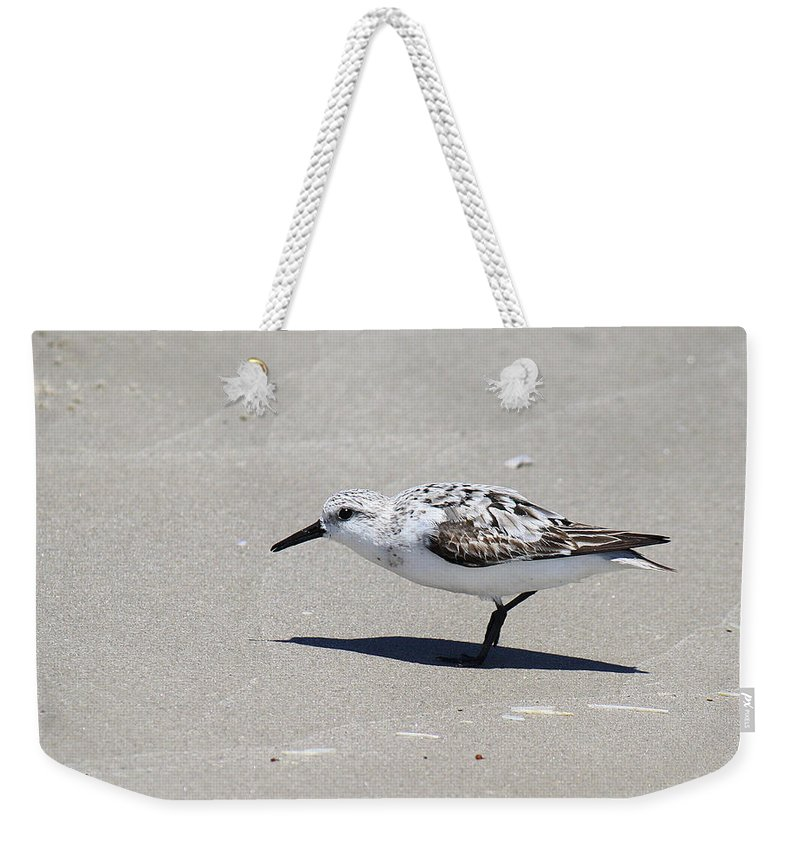 Calidris Alba Weekender Tote Bag featuring the photograph Sanderling On The Beach by Roena King