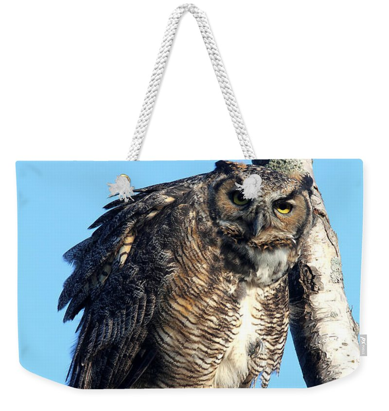 Doug Lloyd Weekender Tote Bag featuring the photograph Say What by Doug Lloyd