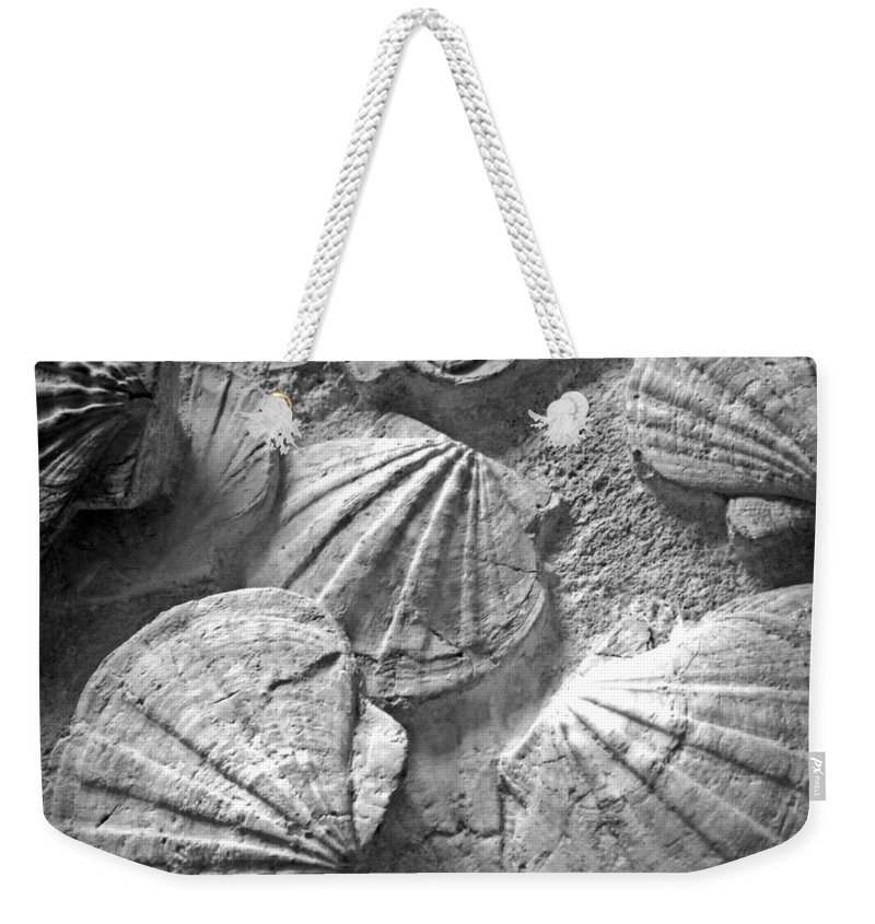 Composition Weekender Tote Bag featuring the photograph Scallops ... by Juergen Weiss