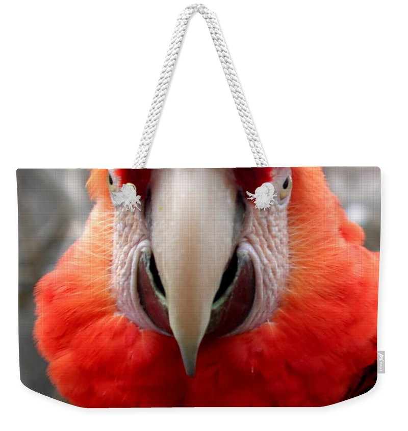 Red Weekender Tote Bag featuring the photograph Scarlet Macaw by Henrik Lehnerer