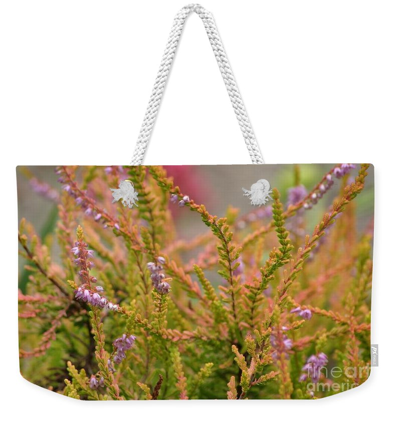 Floral Weekender Tote Bag featuring the photograph Scotch Heather by Living Color Photography Lorraine Lynch