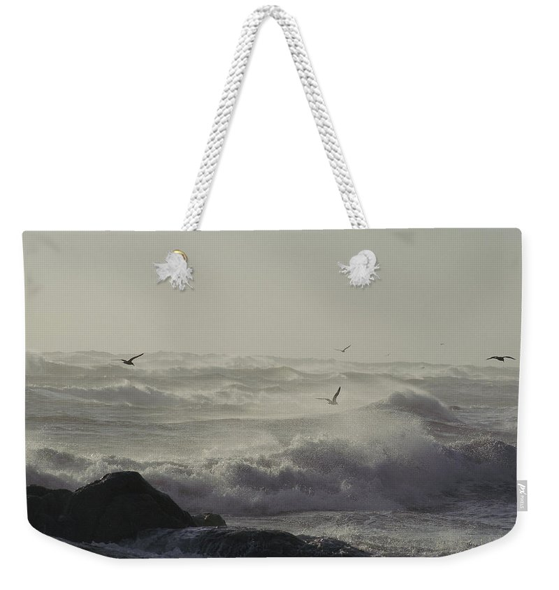 Atlantic Ocean Weekender Tote Bag featuring the photograph Sea Birds Fly Above Large Waves by Bill Curtsinger