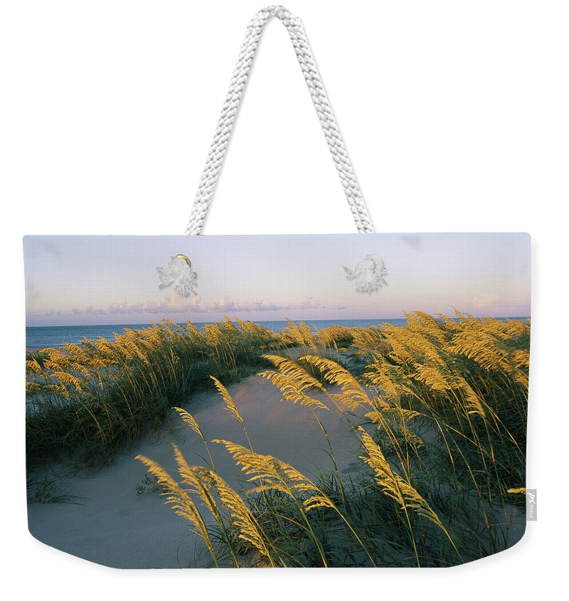 North America Weekender Tote Bag featuring the photograph Sea Oats, Dunes, And Beach At Oregon by Skip Brown