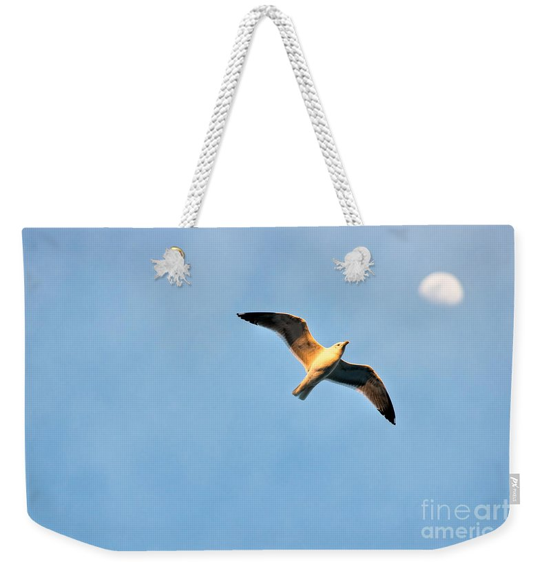 Sunset Weekender Tote Bag featuring the photograph Seagull by Luciano Mortula