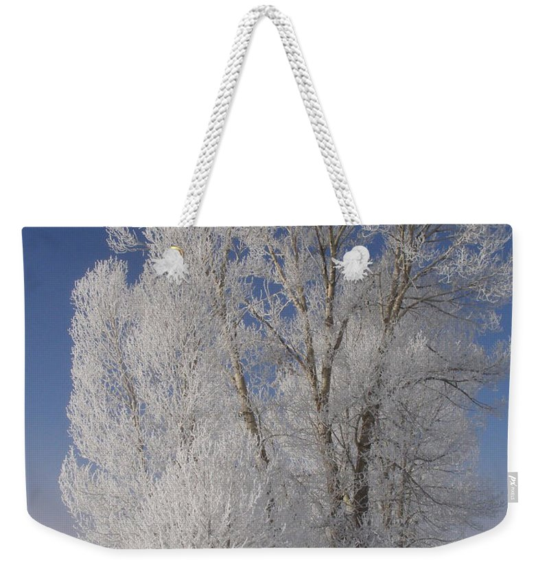 Christmas Cards Weekender Tote Bag featuring the photograph Seasons Greetings From Down The Road by DeeLon Merritt